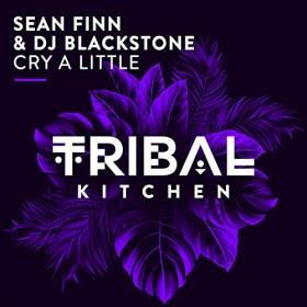 SEAN FINN & DJ BLACKSTONE - CRY A LITTLE